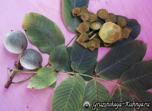 Варенье из грецких орехов. Пошаговый рецепт (14)