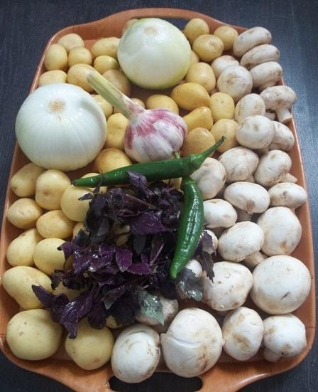 Чашушули из грибов и молодого картофеля (7)