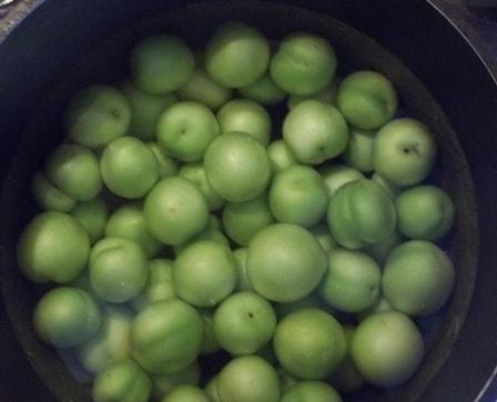 Зеленый ткемали. Рецепт кислого соуса из слив (5)