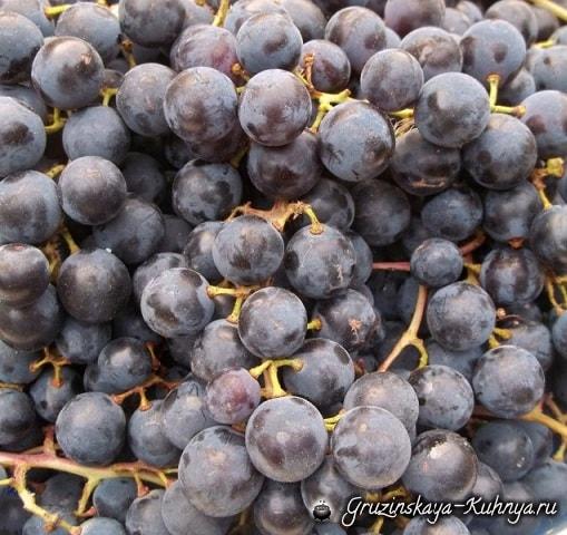 kak-prigotovit-pelamushi-iz-krasnogo-vinograda-3