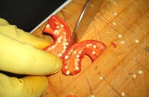 Аджика из красного перца (4)