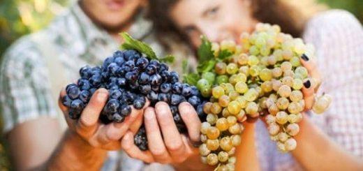 Можно ли кормящей маме виноград и инжир (1)