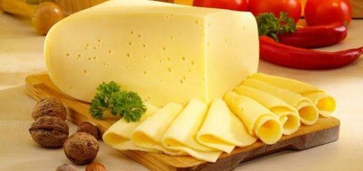 Изготовление, состав и хранение Российского сыра (1)