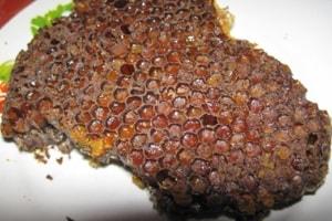 Трепанг на меду и перга - полезные свойства и применение (3)