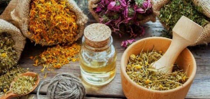 Полезные травы в народной медицине (2)