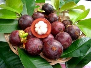 Выращиваем тропические фрукты в домашних условиях (2)