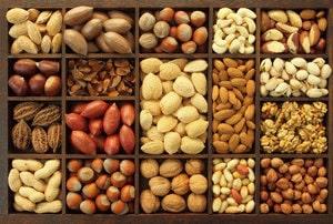 Виды орехов и особенности их произрастания (3)