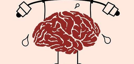 Диета, стимулирующая умственную деятельность (2)